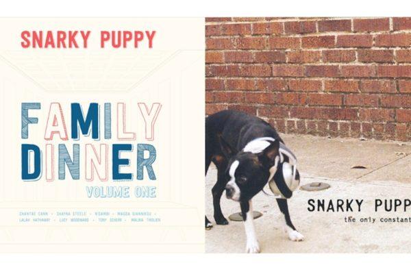 Snark Puppy LPs (Fair Use)